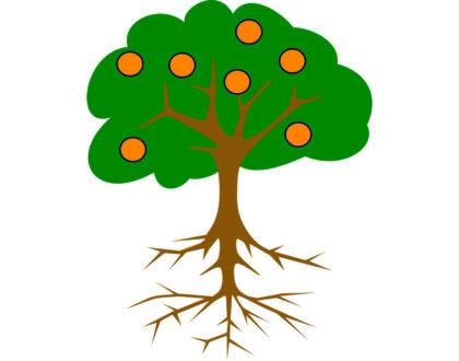 Время-Дерево-Удобрение. Сбор данных и генерация идей. Ретроспектива